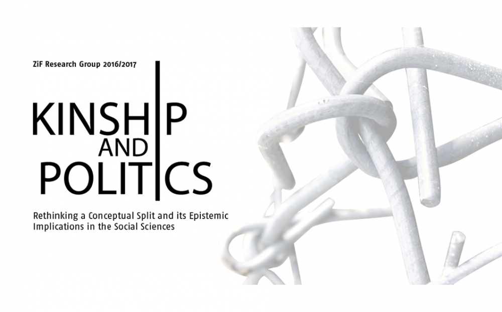 Kinship and Politics (Completed Project)
